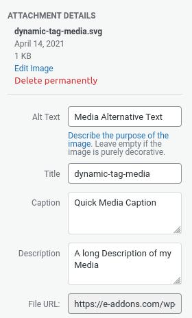 elementor media dynamic tag library